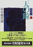 天の瞳 幼年編2 (角川文庫)