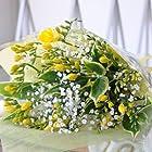 """旅立ちのお花 フリージア 鮮やかな黄色とカスミ草の花束 フリージア ブーケLサイズ 退職祝い 卒業祝い エーデルワイス 花工房 Bouquet of freesia and gypsophila """"L size"""""""