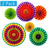 Set of 12 Vibrant Colorful Hanging Paper Fans Rosettes Party Decorations Fiesta Party Supplies Photo Props for Wedding Birthday Baby Shower Event (Style 1) [並行輸入品]