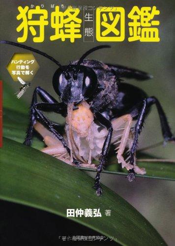 狩蜂生態図鑑―ハンティング行動を写真で解くの詳細を見る
