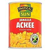 Tropical Sun Jamaica Ackee 540g - (Tropical Sun) ジャマイカのアキーの540グラム [並行輸入品]