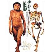 ルーシーの膝―人類進化のシナリオ