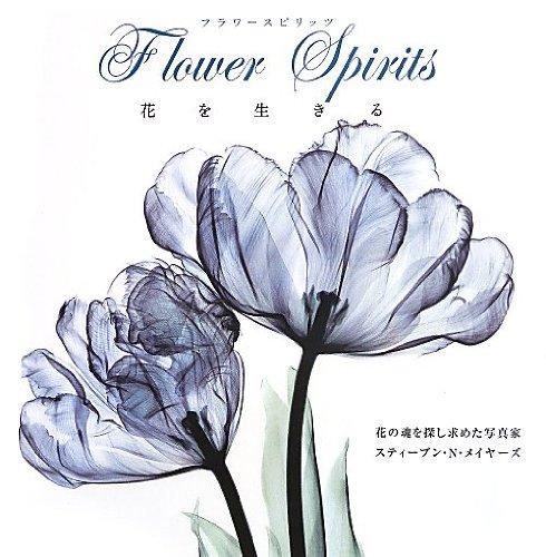 フラワースピリッツ 花を生きるの詳細を見る