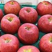 シナノスイート Aランク(贈答用)3kg (約3kg 8玉~11玉) ≪ご贈答用≫ 長野県産りんご