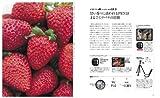 オリンパス PEN ファンブック E-P2/E-P1対応 (インプレスムック DCM MOOK) 画像