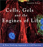 Cells, Gels and the Engines of Life: A New, Unifying Approac…