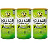 Great Lakes Gelatin, Collagen Hydrolysate, Unflavored Beef Protein, Kosher, 16 Oz Cans (Pack of 3)