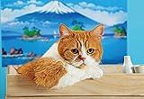 108ピース ジグソーパズル ふて猫 春馬 いい湯だな? ラージピース(26x38cm)