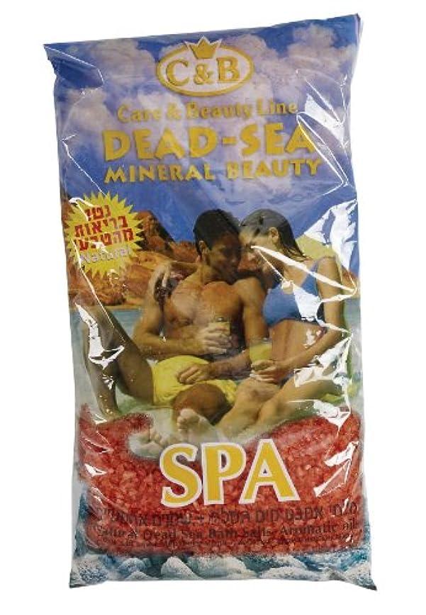 付添人サラダロマンス真正のイスラエル製 死海産入浴塩 500g カサつき、湿疹、ニキビの緩和に はがすタイプの良い香りのオイル (Bath Salts)