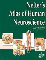 Netter's Atlas of Human Neuroscience (Netter Basic Science)