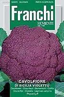 発芽SEEDSだけでなくPLANTS:私種子カリフラワーカリフラワーディシシリアバイオレット種子