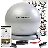Home Gym Bundle Exercise Ball with 15lb Resistance Bands and Stability Base - Swiss Ball Fitness Workout Equipment Fitball - Portable 65CM Yoga Ball Chair for Strength Training, Upper and Lower Toning