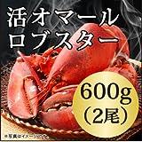 活 オマール ロブスター(600gx2尾)