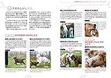 ドッグ・トレーナーに必要な「子犬レッスン」テクニック: 子犬の気質を読みながら、犬の語学と社会化を適切に学ばせる (犬の行動シミュレーションガイド) (犬の行動シミュレーション・ガイド) 画像