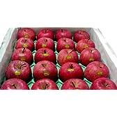 青森産  いかりりんご 超新鮮 ふじ  10kg 大玉28~32個入り