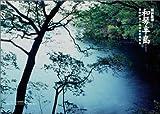 北海道の森と湿原をあるく 画像