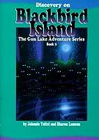 Discovery on Blackbird Island (Gun Lake Adventure Series)