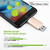 【Apple認証 (Made for iPhone取得)】 Omarsフラッシュドライブ 2 USBメモリコネクタ付きiPhone iPad iPod touchの容量不足解消 (32Gゴールド)