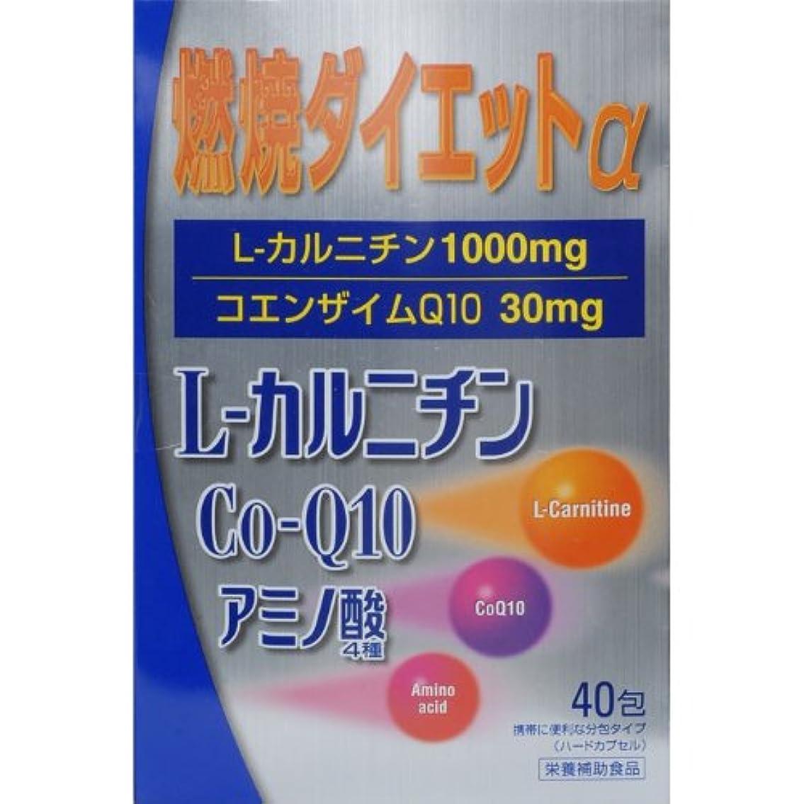 トリップ骨の折れる放射する燃焼ダイエットL‐カルニチンα 40包