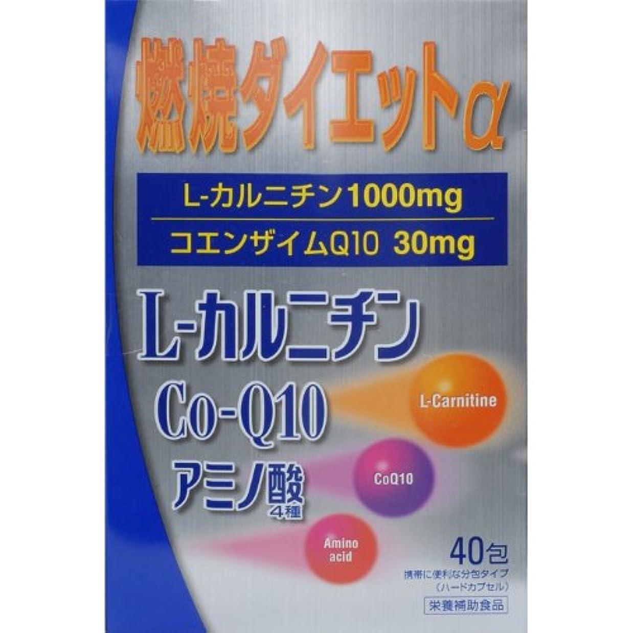 ルーム一方、脳燃焼ダイエットL‐カルニチンα 40包