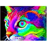Baoblaze 5D DIY Diamond Painting Kit for Adult Beginners Rhinestone Pictures Embroidery Home Wall Decoration - Cat Full Drill