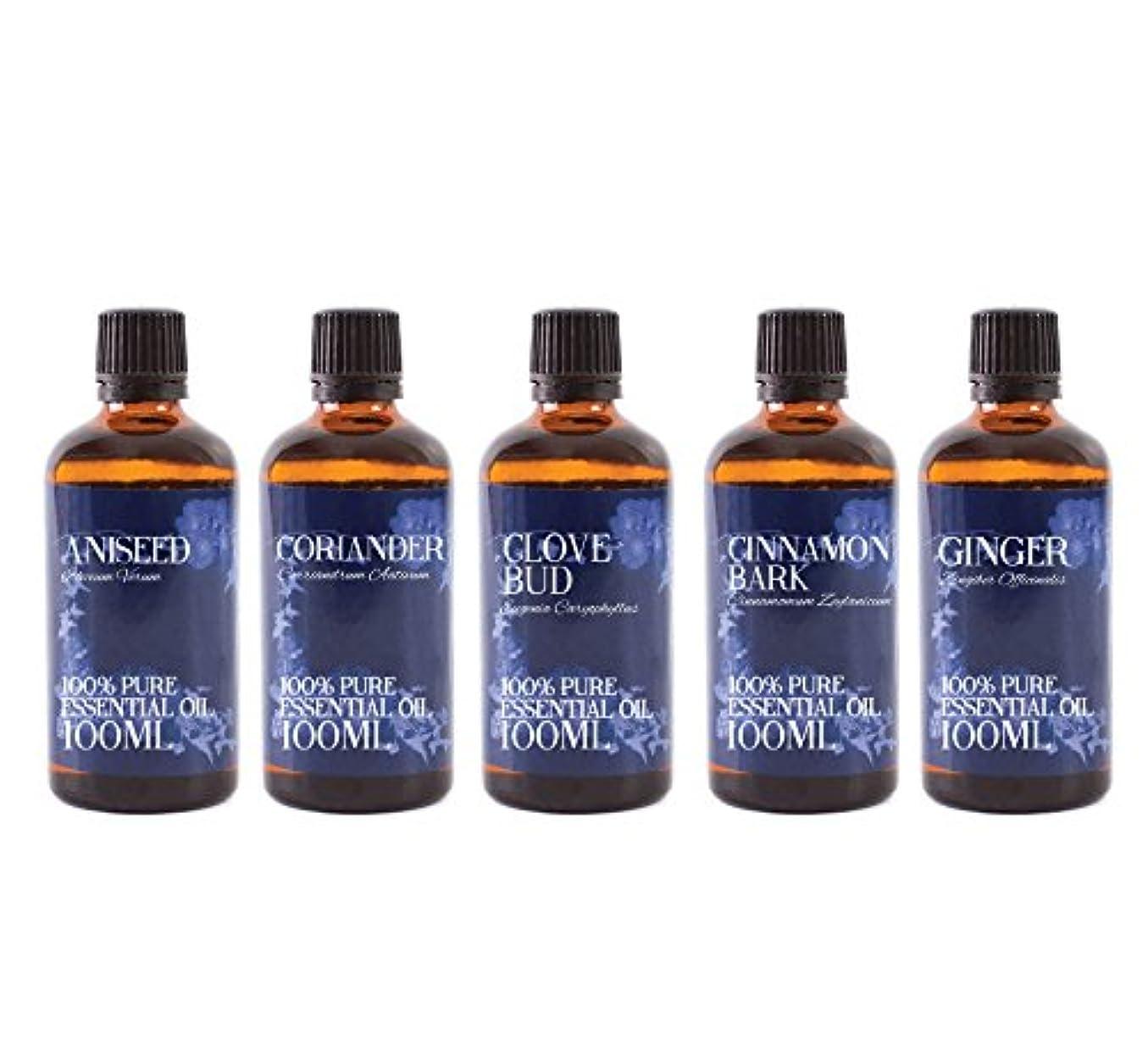 潮よく話される行くMystic Moments   Gift Starter Pack of 5 x 100ml Spice Essential Oils