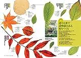 最新版 最高の植栽をデザインする方法 (建築設計シリーズ2) 画像