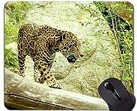 賭博のマウスパッドの習慣、ジャガーの野生のヒョウの滑り止めのゴム製基礎マウスパッド