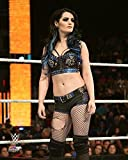 """Paige WWE 2015 Action Photo (Size: 11"""" x 14"""")"""