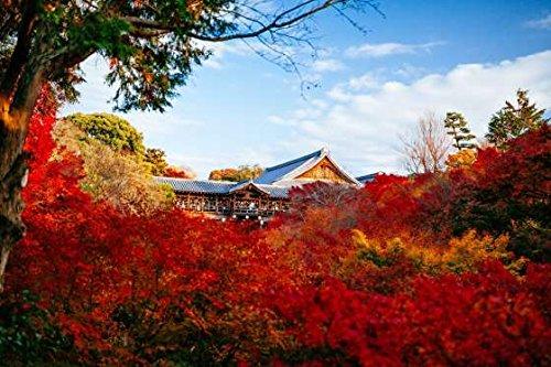 カラービーズストーン画  日本の紅葉名所 (東福寺)