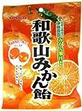 川口製菓 和歌山みかん飴 100g×10袋