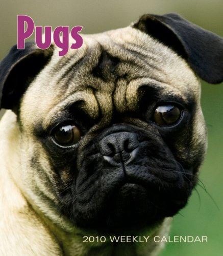 Pugs 2010 Calendar