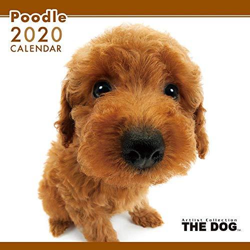 アーリスト 2020 THE DOG カレンダー プードル