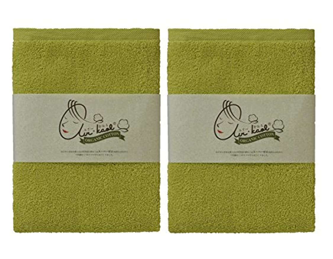 粘土光沢のある切断するエアーかおる バスタオル グリーン 60×120×1cm 2個セット