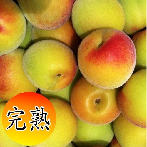産地直送 和歌山県産南高梅(完熟梅)約5kg