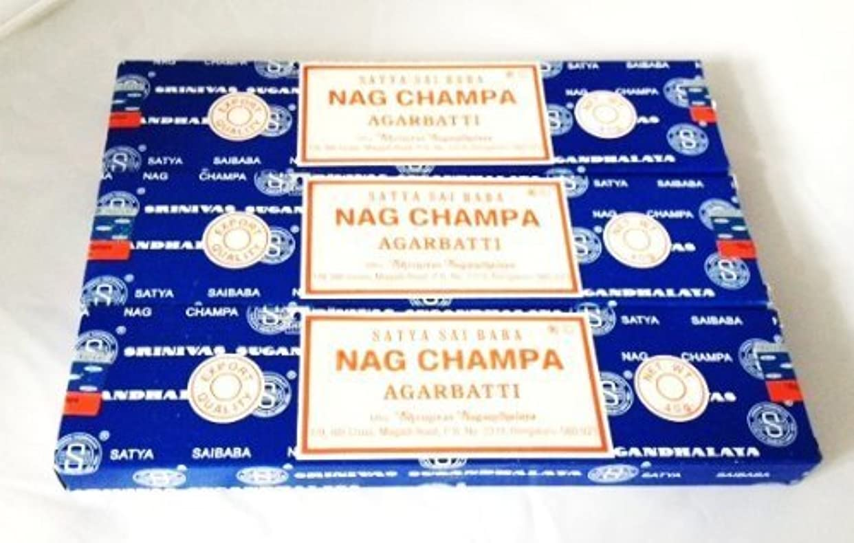 位置する成果天井Satya Nag Champa Incense Sticks 40 Gram 3 Pack by Satya [並行輸入品]
