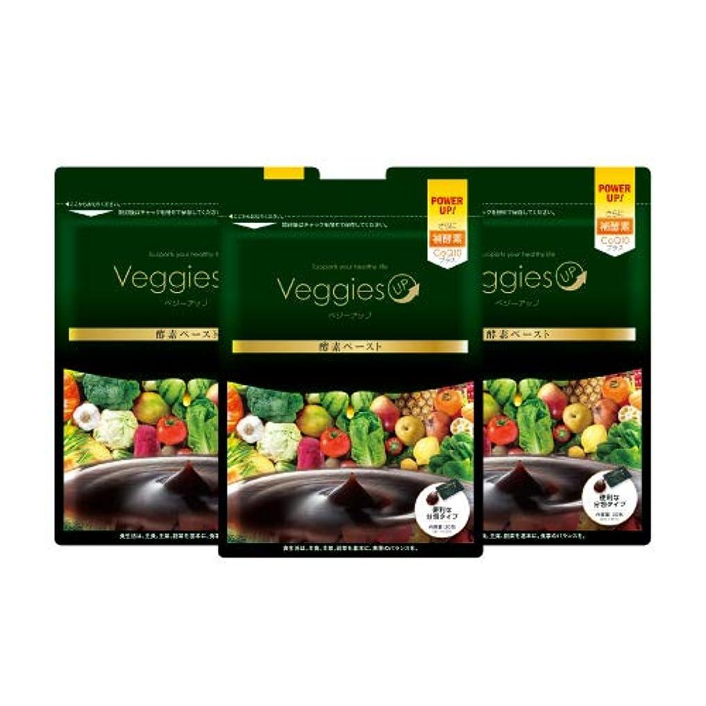 ドームテレビ局電気のベジーアップ酵素ペースト 90g [3g×30包] 3袋セット ダイエット オリゴ糖 イヌリン コエンザイムQ10 黒ウコン 健康