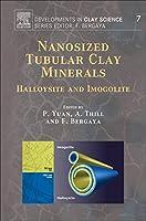 Nanosized Tubular Clay Minerals, Volume 7: Halloysite and Imogolite (Developments in Clay Science)