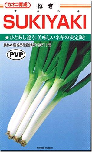 ネギ種子・すきやき(SUKIYAKI)ねぎ(20ml)