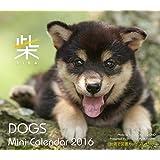 2016ミニカレンダー ドッグズ「柴」 ([カレンダー])