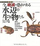 今、絶滅の恐れがある水辺の生き物たち―タガメ・ゲンゴロウ・マルタニシ・トノサマガエル・ニホンイシガメ・メダカ (ヤマケイ情報箱)