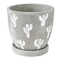 SPICE OF LIFE 植木鉢 レリーフプランター サボテン グレー Lサイズ 直径12×11.5cm セメント 底穴あり 皿付き CCGH1863