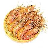 ボタンエビ 天然 特大 生ぼたんえび お刺身 お寿司 海鮮丼 (500g大サイズ訳あり)