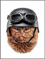 【FOX REPUBLIC】【猫 ねこ ヘルメット】 白光沢紙(フレーム無し)A3サイズ