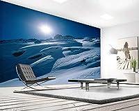 Ansyny 壁画3 dポーラー世界風景テレビ背景リビングルーム研究壁紙会議室-300X200CM