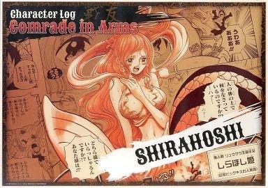 """ワンピース ポスター """"Character Log"""" ~comrade in arms 戦友Ver. しらほし 単品"""