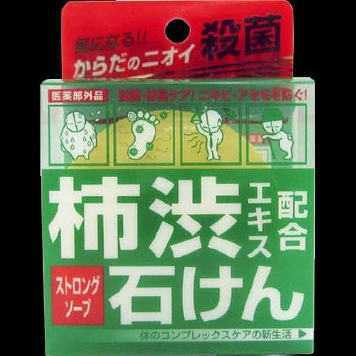 親愛なクリーナー錆びデオタンニングSTソープ ×2セット