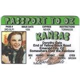 Wizard Wizard of Oz - Dorothy Fun Fake ID License by Signs 4 Fun [並行輸入品]