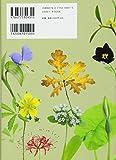 鉢植えでも楽しめる 物語と伝説の植物 四〇種の栽培ガイド 画像