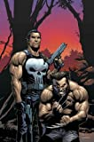 Wolverine/punisher (Marvel Knights)